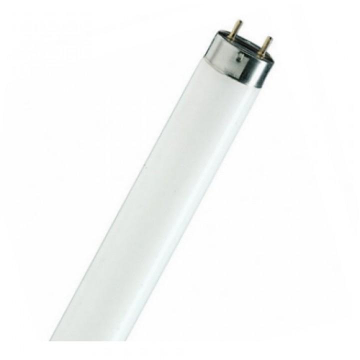 Лампочки для люминесценного светильника L 18W/765 OSRAM